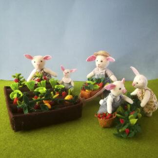 huerto de hortalizas